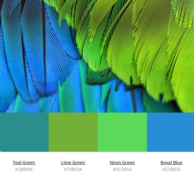 32 Shades Of Green Color Complete Guide 2020