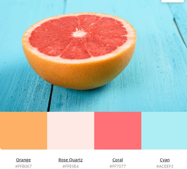 65 Shades Of Orange Color With Hex Code Complete Guide 2020
